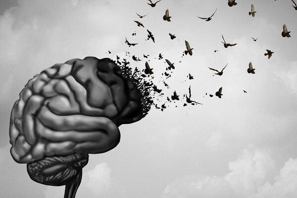 جوان کردن مغز ممکن می شود