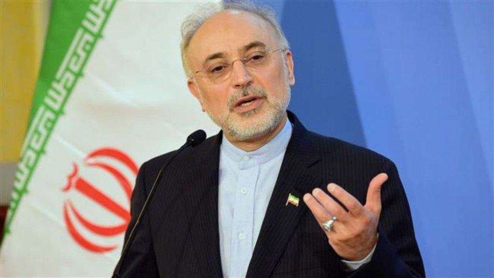 صالحی طی یادداشتی در لوفیگارو راهکارهای سرانجام تنش بین واشنگتن و تهران را تشریح کرد
