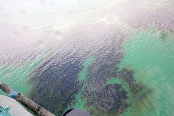 شناسایی منشأ آلودگی نفتی آبخوان منطقه ری