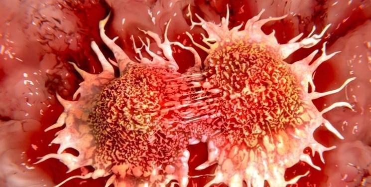 خوراکی هایی که زنان را در برابر سرطان سینه ایمن می نماید